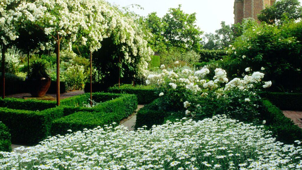 Den vita trädgården